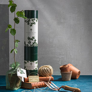 Notonthehighstreet.com - Exclusive Truffle Tree Gift by THE PRESENT TREE