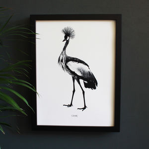 Encyclopaedic Inspired Fine Art Print, Majestic Crane