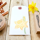 Daffodil Flower Hand Carved Rubber Stamps