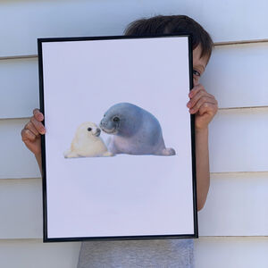 Illustrated Children's Wall Art Print Seal And Pup