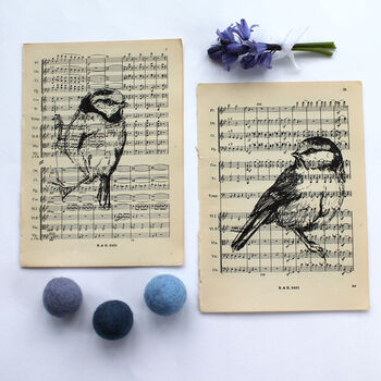 Blue Tit Print On Vintage Music Paper