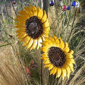 Sunflower Garden Sculpture