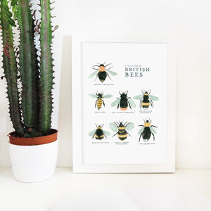 Illustrated British Bees Springtime Print - animals & wildlife