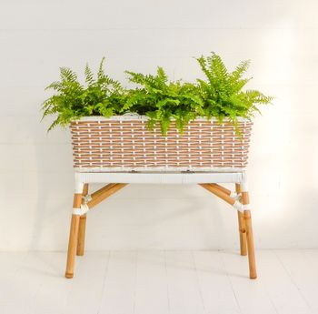 Natural Bamboo Planter