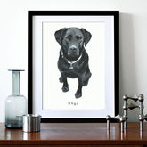 Pet Portrait - prints & art