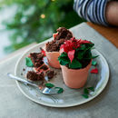 Edible Poinsettia Flower Pot Cake