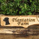 Personalised Woodland Wood And Driftwood Signs