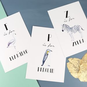 Illustrated Animal Alphabet A4 Print - animals & wildlife