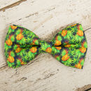 The Alderley Green Yellow Pineapple Bow
