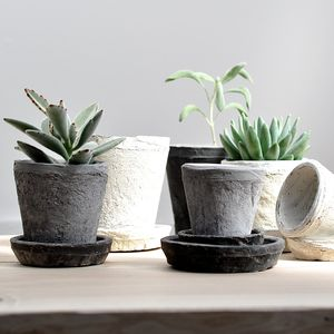 Clay Pots, Set Of Three - flowers & plants