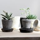 Clay Pots, Set Of Three