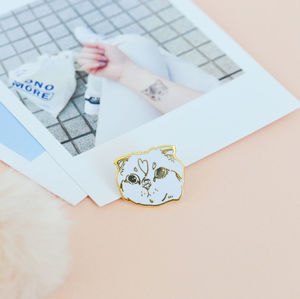 Sassy Cat Pin