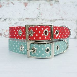 Dog Collar Traditional Buckle Dotty For Dots