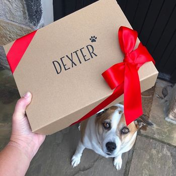 Personalised Dog Gift Hamper