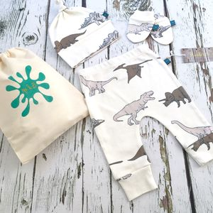 Dinosaur Newborn Gift Set Up To Three Months