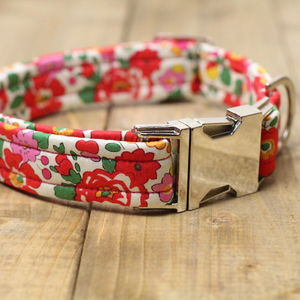 Poppy Liberty Dog Collar - walking