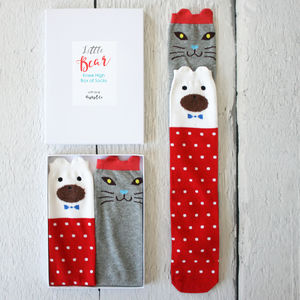 Little Bear Box Of Knee High Kids Socks - cosy clothing