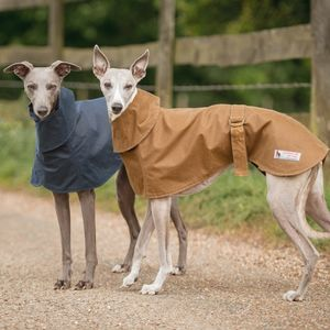 Whippet Coat With Wrap Collar - dogs