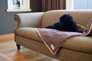 Harris Tweed Dog Blanket - dogs