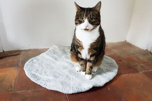 Natural Cat Pet Bed Mat Rug