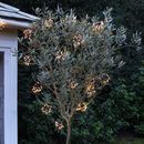 Outdoor Starburst Light Garland Mains Or Battery