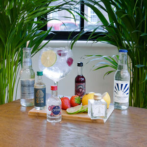 The Four Styles Of Gin And Tonic Tasting Gift Set