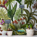 Glasshouse Tropical Botanical Print Wallpaper