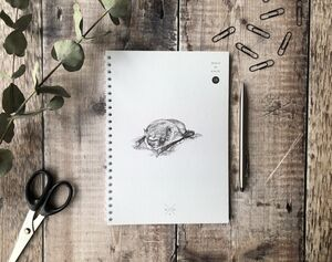 Pipistrelle Bat Notebook