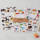 Animals Notebook Set Of Three, Dinosaurs And Animals