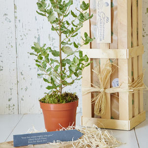 'From Tiny Acorns' New Baby Gift - gardening