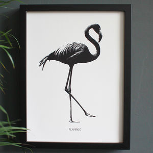 Encyclopaedic Inspired Fine Art Print, Flamingo