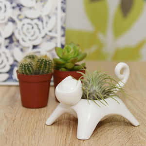Ceramic Cat Plant Holder With A Plant - pet-lover
