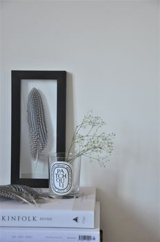 Large Framed Guinea Fowl Feather