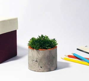 Industrial Concrete Planter - shop by price