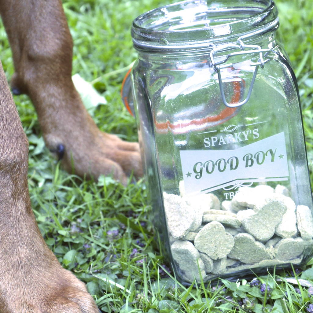 Kilner Dog Treat Jar