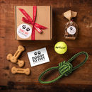 Christmas Activity Gift Box For The Dog