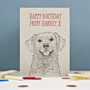 Golden Retriever Birthday Card - birthday cards