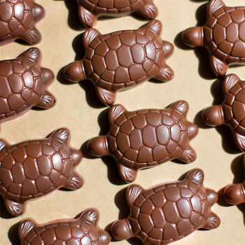 Milk Chocolate Turtles