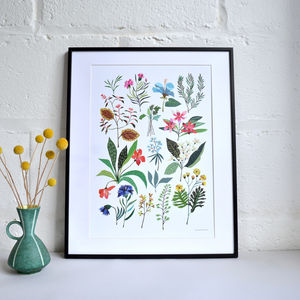 'Summer Plant' Print - what's new