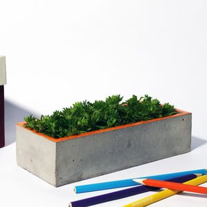 Concrete Catchall Planter