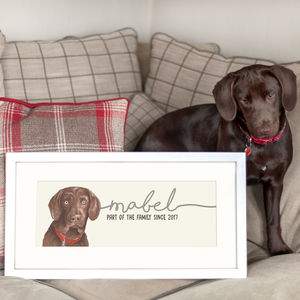 Personalised Bespoke Illustrated Portrait Of Your Dog - pet portraits