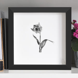 Tulip Flower Print One