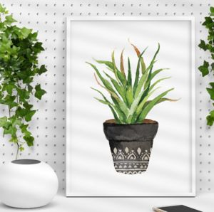 Bohemian Potted Cactus Illustration Print - still life