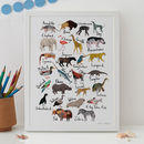 Animal Alphabet Print A To Z