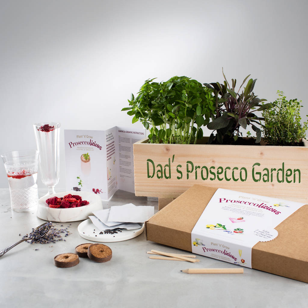 Prosecco garden windowsill planter and growing kit by for Gardening kit for toddlers