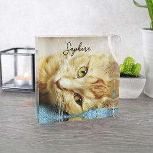 Personalised Pet Photo Acrylic Standing Print