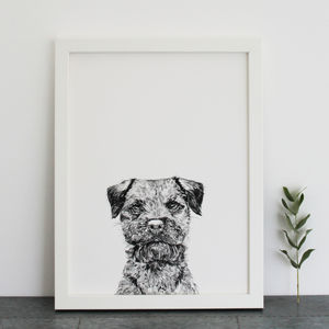 Border Terrier Print - for dog lovers and cat lovers