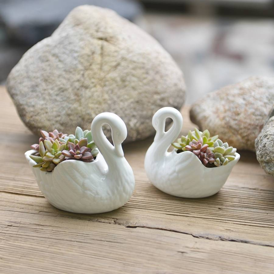 Ceramic Swan Planter By Dingading Terrariums