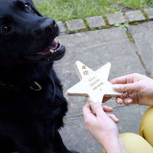 From The Dog Personalised Wooden Star Keepsake - personalised gifts