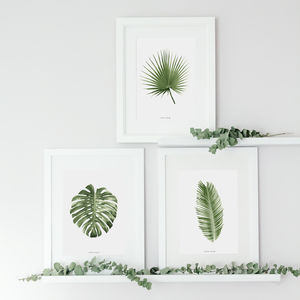 Set Of Three Botanical Palm Leaf Prints - posters & prints